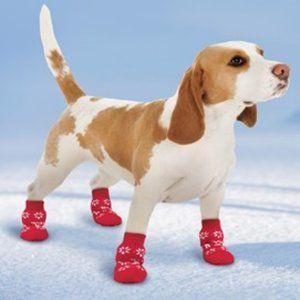 NEW Snowflake & Reindeer Gripper Dog Socks  1 Set